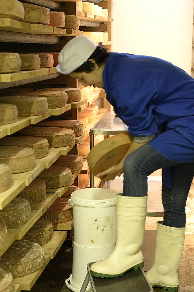 Dairy maid washing cheese